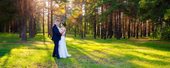 b_550_550_16777215_00_images_aufmacher_wedding-ehe-hochzeit-garten-pixabay-628515-2-5.jpeg